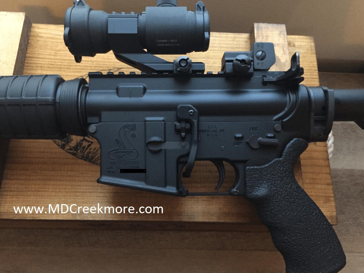 Bushmaster-AR-15