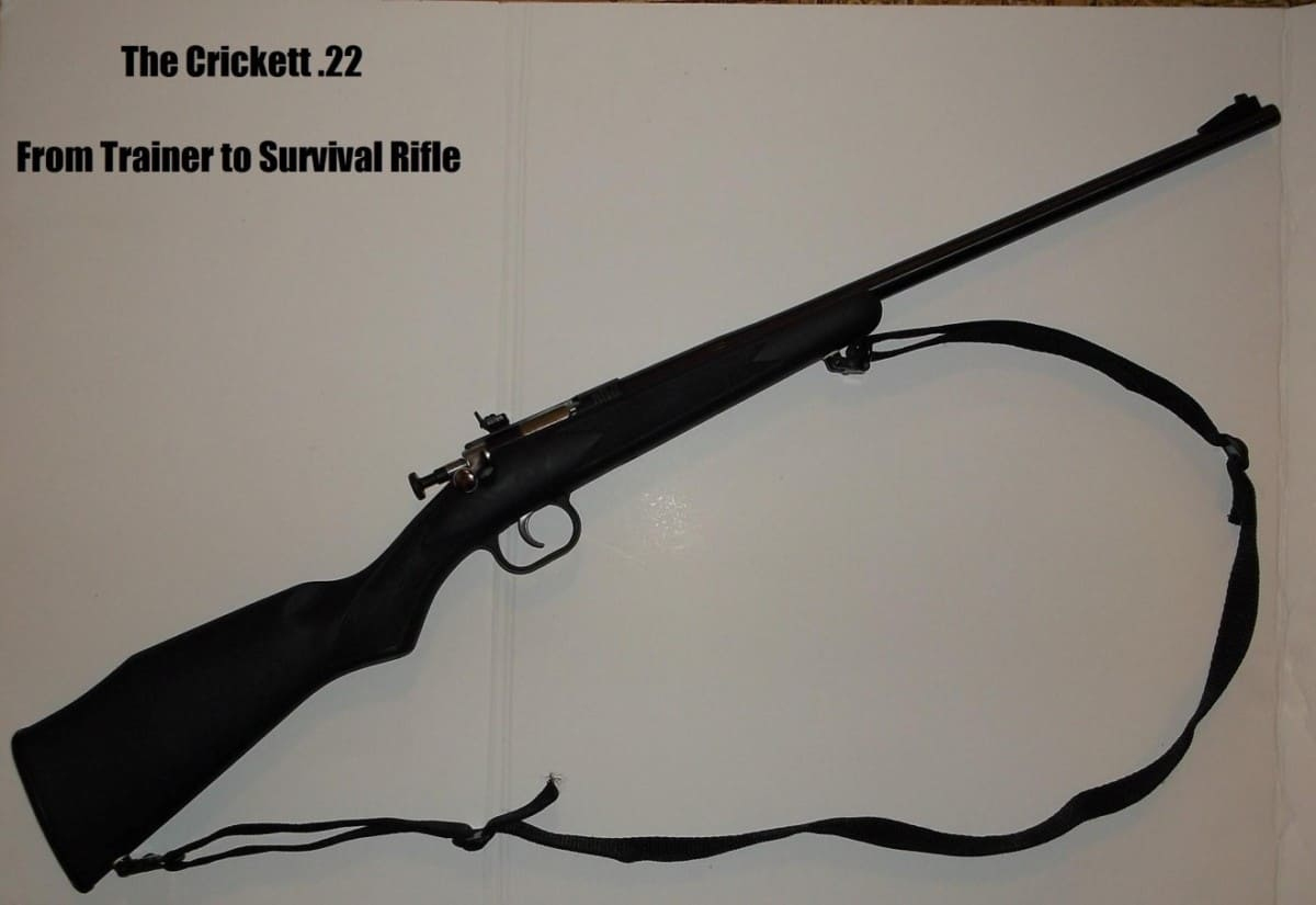 cricket .22 rifle review